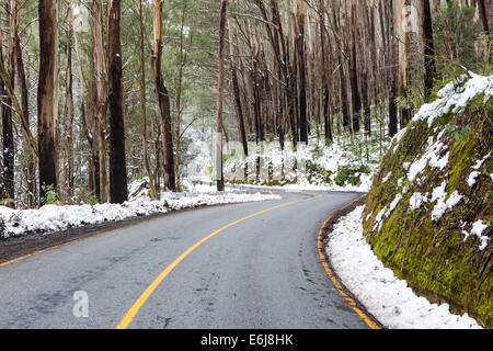 The road to Lake Mountain in Yarra Ranges National Park after a snow storm in Victoria, Australia - Stock Image