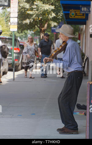 ASHEVILLE, NORTH CAROLINA, USA - September 9, 2018: An older violin player plays solo for tips on a busy downtown Asheville street next to a sign comm - Stock Image