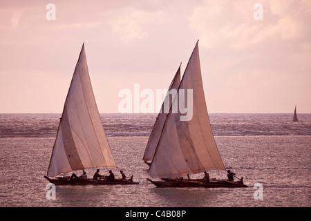 Zanzibar, Matemwe. Dhows take the morning tides out to fish. - Stock Image
