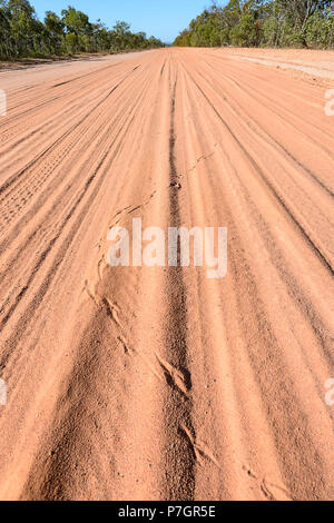 Animal tracks in the red dust of the remote Peninsula Development Road (PDR), Cape York Peninsula, Far North Queensland, FNQ, QLD, Australia - Stock Image