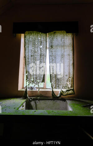 Very dirty kitchen sink and torn net curtains in an abandoned house. - Stock Image