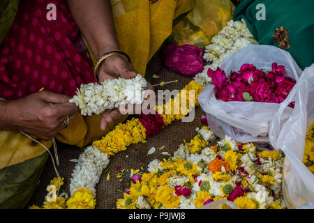 Indian woman making traditional flower garlands at a market stall in Old Delhi, Delhi, India - Stock Image