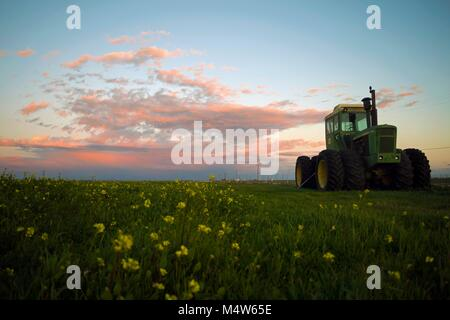 A tractor sits unused in a field during sunset outside of Woodland, CA. - Stock Image