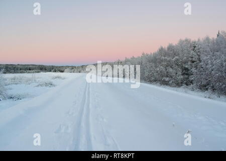 The tracks of a cross-country skier in the snow are leading into the distance at sunset on a cold winter day in rural Sweden. - Stock Image