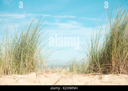 Bright blue sky with sandy beach, grasses, and copy space. Norfolk, UK - Stock Image