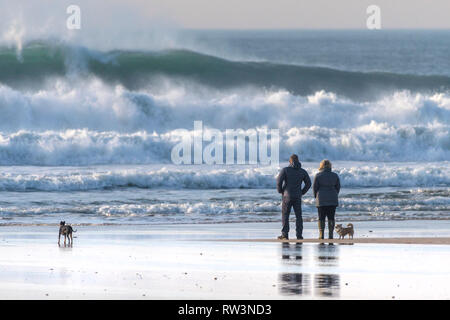 Dog walkers and their dogs standing on the shoreline watching big waves at Fistral in Newquay Cornwall. - Stock Image
