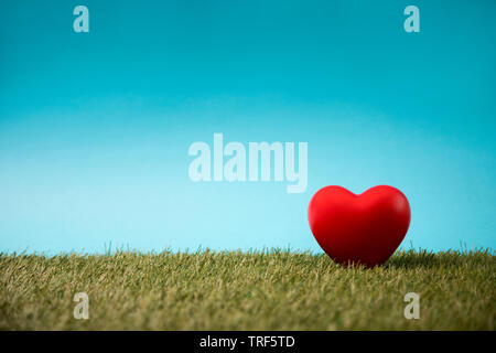 Red heart on green grass and blue sky - Stock Image