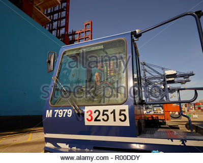 Driver in truck at Port of Felixstowe, England - Stock Image