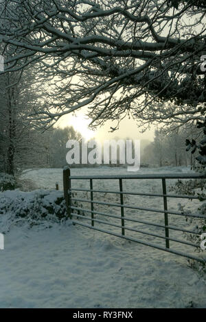 Winter country side, County Mayo, Republic of Ireland. - Stock Image
