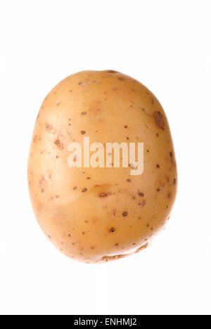 One raw potato on white background close up. - Stock Image