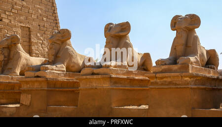 Ram Head Sphinxes at the Karnak Temple Complex, commonly known as Karnak, a vast mix of decayed temples, and other buildings in Luxor, Egypt - Stock Image