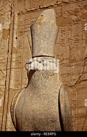 Egypt Edfu Temple Of Horus - Stock Image