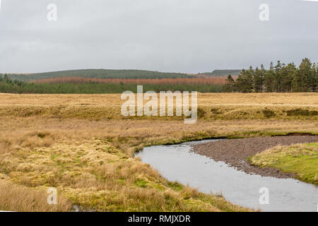 Brecon Beacons National Park landscape and the river Usk, South Wales, UK - Stock Image