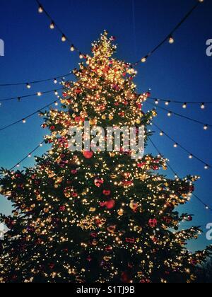 Christmas tree lights - Stock Image