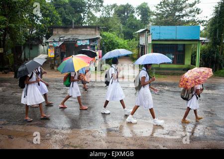 SCHOOL CHILDREN IN SIGIRIYA DURING MONSOON RAIN STORM - Stock Image