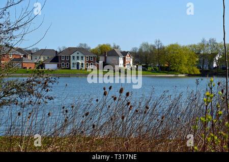 View of houses across Watermead Lake, Watermead, Aylesbury, Buckinghamshire, UK - Stock Image