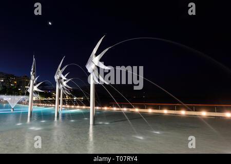 Illuminated fish sculptures in the Lagoon at night, Cairns Esplanade, Far North Queensland, FNQ, QLD, Australia - Stock Image