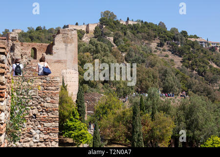 The Medieval Alcazaba de Malaga dating from 11th century, Malaga old town, Andalusia, Spain Europe - Stock Image