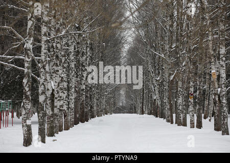 Winter snowy day in a beautiful at the edge of the forest - Stock Image