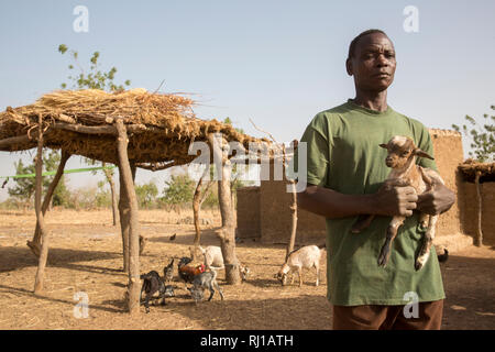 Kourono village, Yako province, Burkina Faso; Moussa Mande, 54, goat project beneficiary, with goat droppings he will use to fertilize his crop fields. - Stock Image