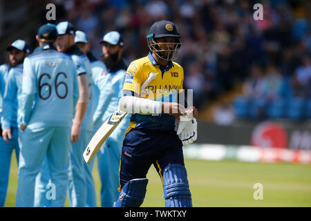 Emerald Headingley, Leeds, Yorkshire, UK. 21st June, 2019. ICC World Cup Cricket, England versus Sri Lanka; Sri Lanka captain Dimuth Karunaratne walks back to the pavilion caught behind for 1 off the bowling of Jofra Archer of England Credit: Action Plus Sports/Alamy Live News - Stock Image