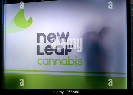 Silhouetted cannabis customers lined up behind a translucent window to buy legal marijuana in Calgary Alberta Canada - Stock Image
