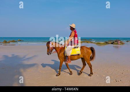 Pony for hire, beach, Hua Hin, Thailand - Stock Image