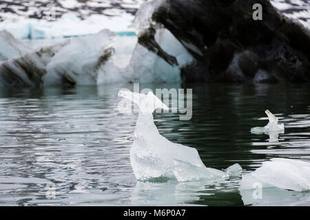 Natural ice sculpture looks like a bird floating passed a dirty iceberg in icy sea off Spitsbergen, Svalbard, Norway, - Stock Image