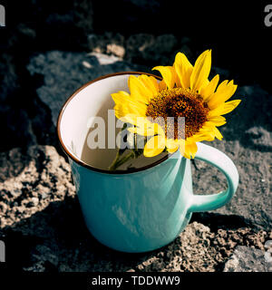 Freedom and environment concept with yellow and coloured sun flower inside a travel wanderlust mug on the rocks - nature and outdoor respect for the E - Stock Image
