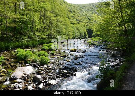 View of river near Watersmeet, Lynmouth, Devon, UK - Stock Image