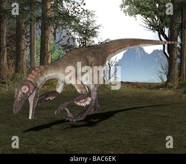 dinosaur Utahraptor - Stock Image