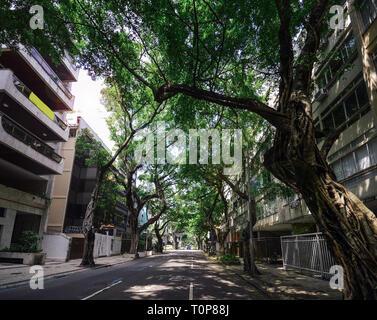 View of tree-lined avenue in Ipanema, Rio de Janeiro, Brazil. - Stock Image