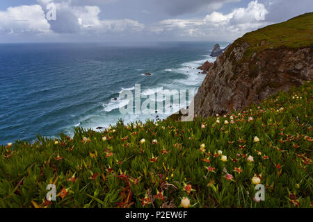 Cabo da Roca, summer, coast, Atlantic Ocean, surf, sea, rocks, cliffs, Portugal - Stock Image