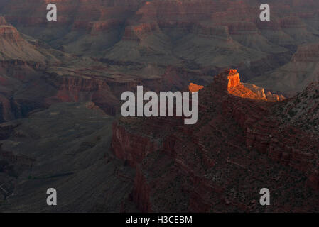 Evening sunlight illuminates a rock formation in the Grand Canyon, Arizona, USA - Stock Image