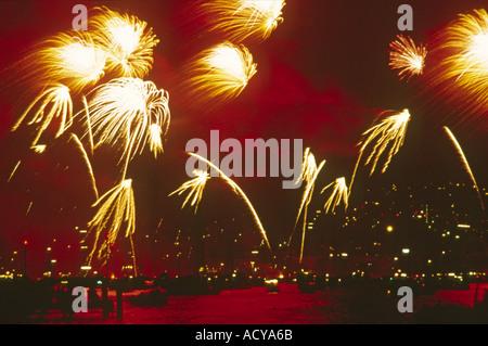 Firework at night dark sky  - Stock Image