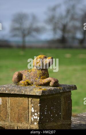 Ornamental stone dog on gatepost near the north Oxfordshire village of Hook Norton - Stock Image