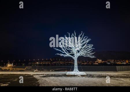 Festive Illuminated tree, Tromso, Norway. - Stock Image