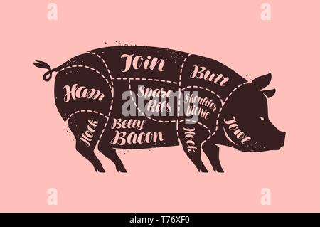 Cuts of meat, pig. Butcher shop, pork vector illustration - Stock Image