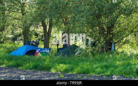 Wild camping in field - Stock Image