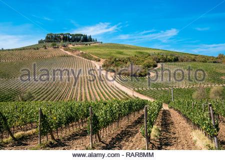 Castellina in Chianti, Tuscany, Italy - Stock Image