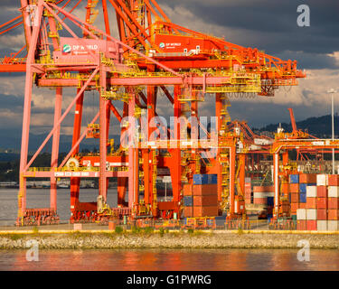 Evening view of container terminal on Vancouver south shore in Coal Harbour, Vancouver, BC, Canada - Stock Image