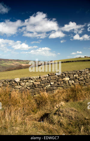 UK, England, Yorkshire, North Yorkshire Moors moorland field near Grosmont - Stock Image