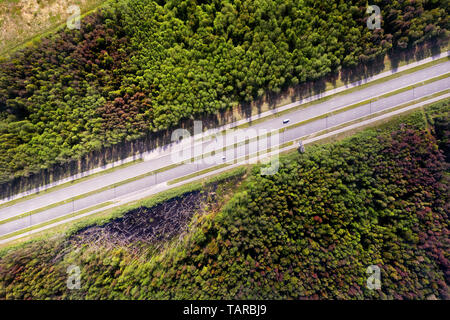 Straight empty highway through deep forest aerial top view. Bright summer image at sunny day - Stock Image