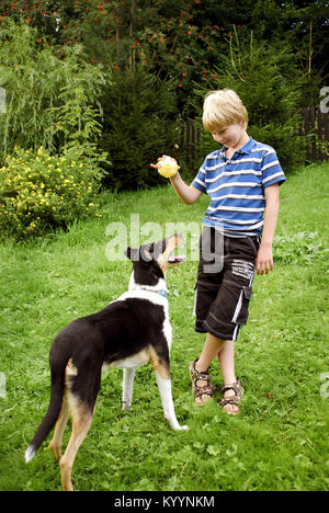 Blond boy and dog are playing with ball in garden - Stock Image