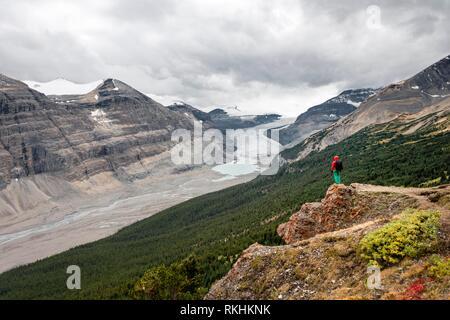 Hiker standing on a rock, view in valley with glacier tongue, Parker Ridge, Saskatchewan Glacier, Athabasca Glacier, Jasper - Stock Image
