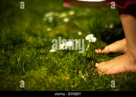 Five year old girl stands on lawn - Stock Image