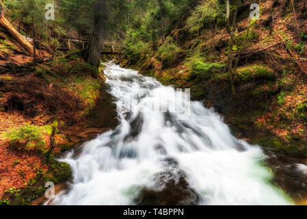Mountain river under wooden bridge. Beautiful scenery from spring forest - Stock Image