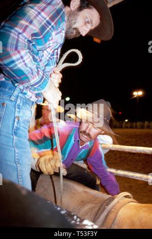 Florida Osceola County River Ranch Resort Friday night rodeo bull rider - Stock Image