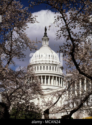 United States Capitol Building - Houses of Congress - Stock Image