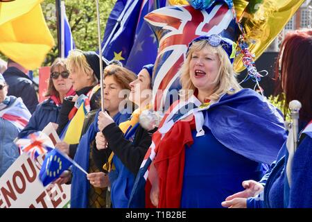 London, UK. 25th Mar 2019. Remain Protesters, Houses of Parliament, Westminster, London. UK Credit: michael melia/Alamy Live News - Stock Image